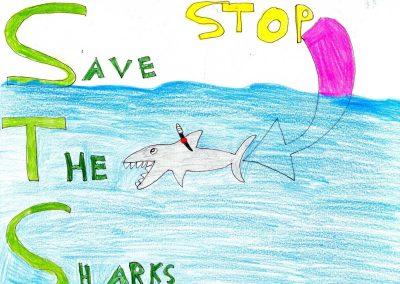 silence_of_the_sharks_2017_015