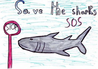 silence_of_the_sharks_2017_016