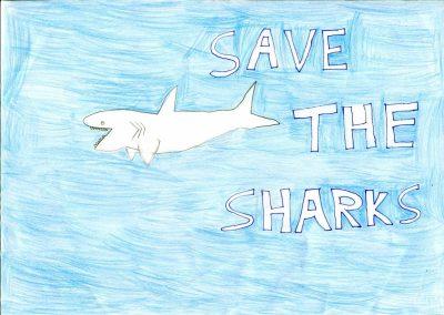 silence_of_the_sharks_2017_018