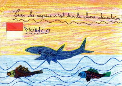 silence_of_the_sharks_2017_027