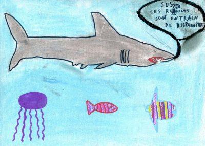 silence_of_the_sharks_2017_033