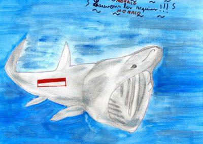 silence_of_the_sharks_2017_047