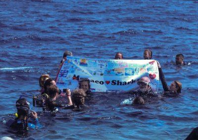silence_of_the_sharks_2017_065