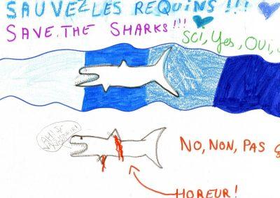 silence_of_the_sharks_2017_144