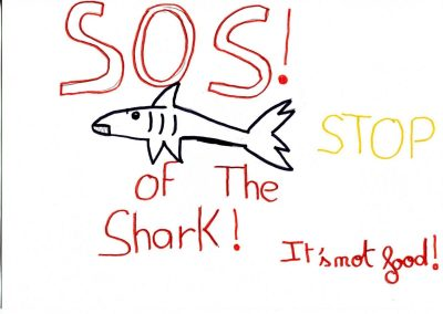 silence_of_the_sharks_2017_177