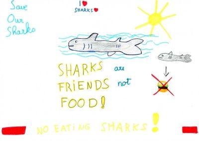 silence_of_the_sharks_2017_184